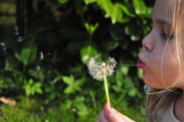 【エヌドットシャンプー・トリートメント】成分・匂い・使い方を完全解析します!!